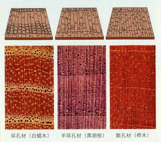 1000多的实木床,真是橡木?确定不是橡胶木?源氏木语靠谱吗?味道大咋回事?附实木家具的10个知识点   2021装修日记16